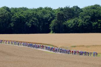 The peloton rides in Stage Twelve of the 2009 Tour de France. (Patrick Hertzog/AFP/Getty Images)