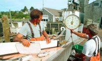 Federal Limits Hurting Mass. Fishermen