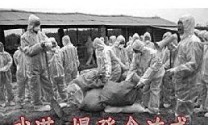 Wuhan Bird Flu Outbreak Censored by Local Media