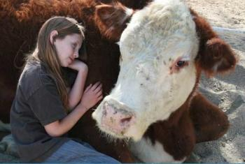 The Gentle Barn aims to help children and animals alike. (The Gentle Barn)