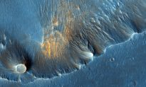 Were Martian Blueberries Molded by Microbes?
