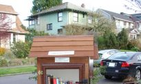 Little Free Libraries Turning Pages Around the World
