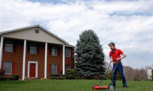 Pollution From Keeping Lawns