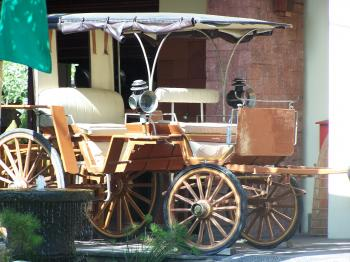 Local transportation (Nadia Ghattas/The Epoch Times)