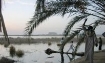 Egypt's Siwa Oasis: Where History Was Inspired