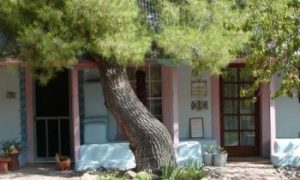 A Hidden Paradise in the Arizona Desert
