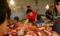 Diseased Pig Meat Sold in China