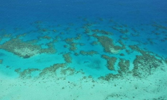 Aerial view of The Great Barrier Reef are seen off Cairns, Australia. (Phil Walter/Getty Images)