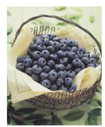 British Columbia is the largest blueberry producer in Canada and the second largest in the world after Michigan in the United States. (Courtesy of the BC Blueberry Council)