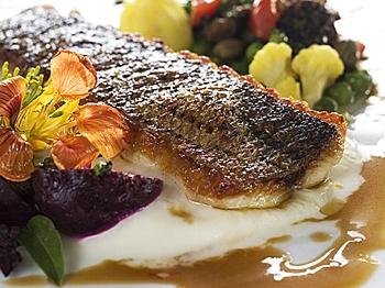Beautiful, sumptuous sea bass (Courtesy of Knife+Fork)
