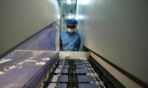 China's Minerals Monopoly Deemed Improbable