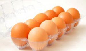 British Man Jailed for Organic Egg Scam