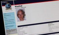 Cyberattacks: 'Anti-WikiLeaks' Sites Blasted, Visa Latest Target