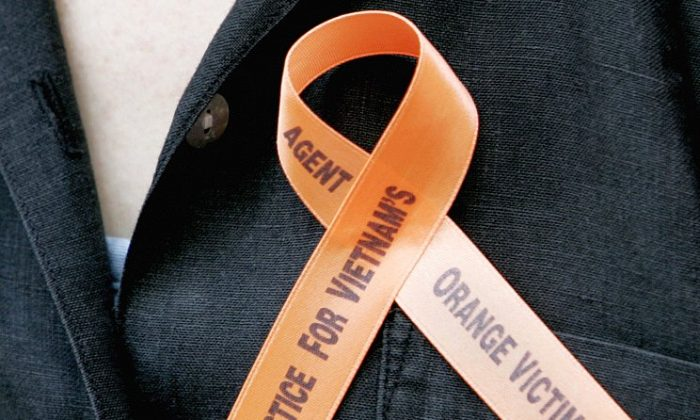 A ribbon worn by a protester supporting Agent Orange victims is seen outside of a New York court on June 18, 2007. (Stan Honda/AFP/Getty Images)
