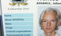Wikileaks' Julian Assange to Surrender to British Police: Report