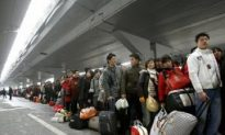 China's Farm Workers Population Hits 225 Million, Many Out of Work