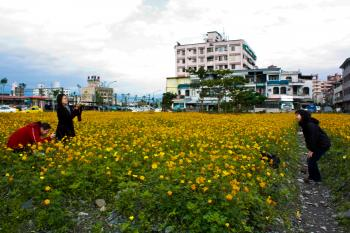 Travelers are delighted with the fields of flowers sprinkled around Yilan County, and can frequently be seen stopping to pose for photos amidst the rich green and yellow shrubbery. (Matthew Robertson/The Epoch Times)