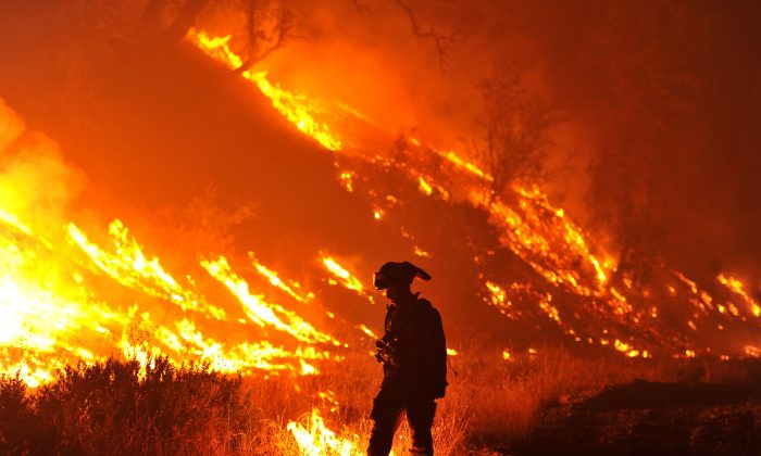 CalFire firefighter Bo Santiago lights a backfire as the Rocky fire burns near Clearlake, Calif., on Monday, Aug. 3, 2015. (AP Photo/Josh Edelson)