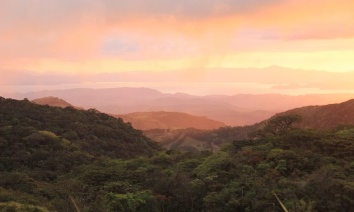Sunset at Monteverde. Due to its high altitude, Monteverde receives a steady supply of clouds whose moisture helps support an extensive rainforest ecosystem.(Wibke Carter)