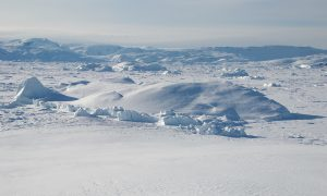 Russia Petitions United Nations for Exclusive Control of North Pole After It Plants Flag There