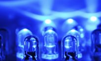 Could Blue LEDs Preserve Food Without Chemicals?