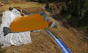 Pressure Mounting on EPA to Be Accountable for Gold Mine Spill