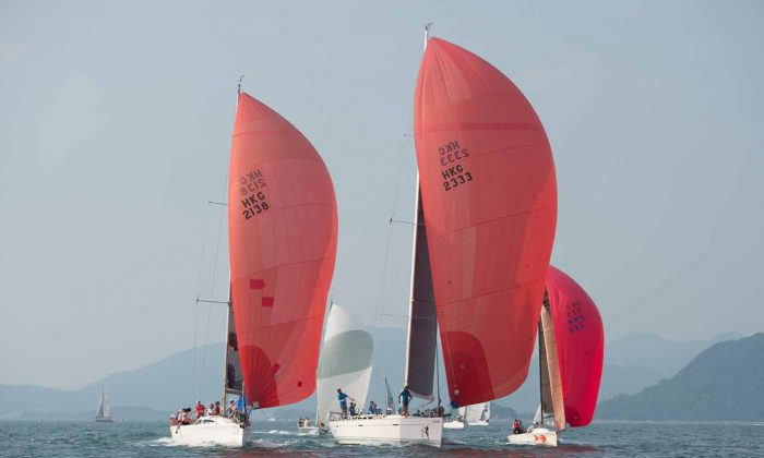 'Stella', 'Lighthorse' and 'Red Herring II' head downwind in the final race of the UK Sailmakers Summer Saturday Series in Port Shelter on Saturday August 8, 2015. (Bill Cox/Epoch Times)