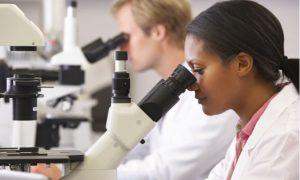 Scientists Against GMOs