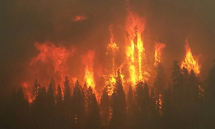 One more California wildfire from last year: getting more dangerous and more expensive. (USFS Region 5/CC BY 2.0)
