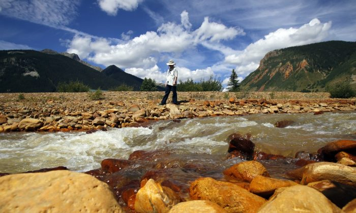 Melanie Bergolc walks along the banks of Cement Creek in Silverton, Colo. on Aug. 10, 2015. The area is a few miles downstream from the Gold King mine, where a wastewater accident several days earlier allowed water contaminated with heavy metals to pour into the creek that feeds rivers critical to survival on the largest Native American reservation in the United States and across the Southwest. (Jon Austria/The Daily Times via AP)