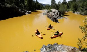 Damages in Colorado Mine Spill Will Take Years to Tabulate