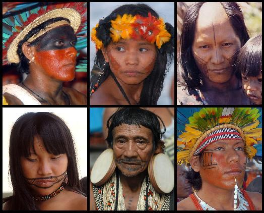 Indigenous people of Brazil (Agência Brasil/CC BY)