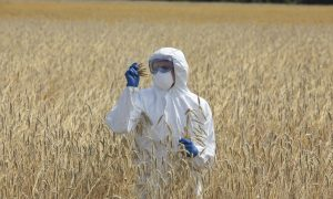 Former Pro-GMO Scientist Speaks Out on the Real Dangers of Genetically Engineered Food