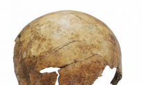 Prehistoric Mass Grave Contained Brutally Beaten Victims (Video)