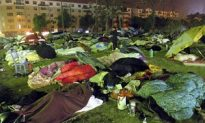 Quake in East China Kills 14
