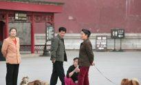 Beijing Protesters Defy Pooch Purge