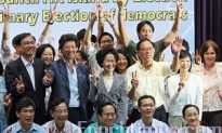 Pan-Democratic Party Supports Anson Chan