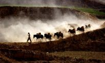 Severe Drought, High Temps and Drying Rivers Taking Toll in China