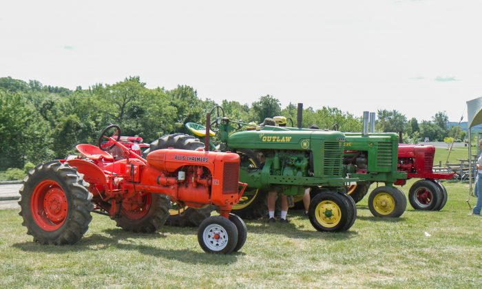 Tractors lined up ahead of the Sunday tractor pull at the Otisville Country Fair on Aug. 22, 2015.  (Holly Kellum/Epoch Times)