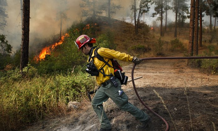 Brandon Gardner, a firefighter with Snohomish County Fire District 7, pulls a water hose into position while helping prevent a wildfire from spreading to a nearby homeowner's property near Okanogan, Wash., on Saturday, Aug. 22, 2015. (Ian Terry /The Herald via AP)