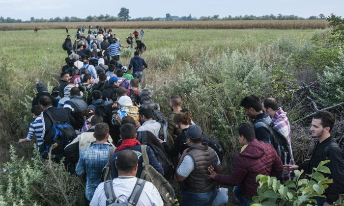 Illegal migrants  make their way  near  the railway crossing at the border between Hungary and Serbia near Roszke, 180 kms southeast from Budapest, Hungary, Tuesday Aug. 25, 2015.  (Sandor Ujvari/MTI via AP)