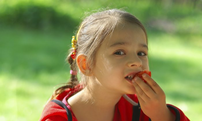 The little girl sits at table in garden and eats tomato. (-101PHOTO-/iStock)