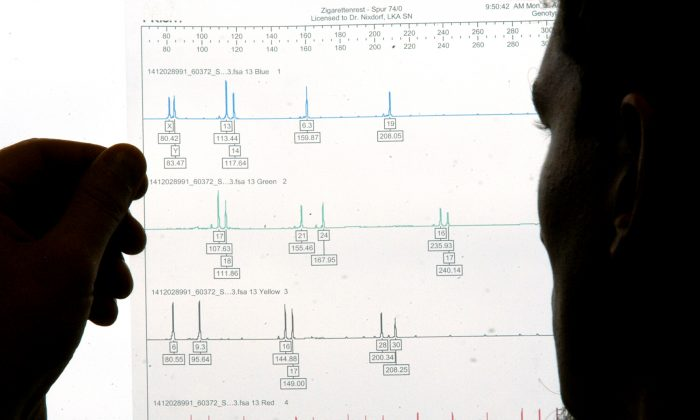 DNA evidence at the scene of a crime is not as clear cut as generally thought. New software may help with that.  (AP Photo/Matthias Rietschel)