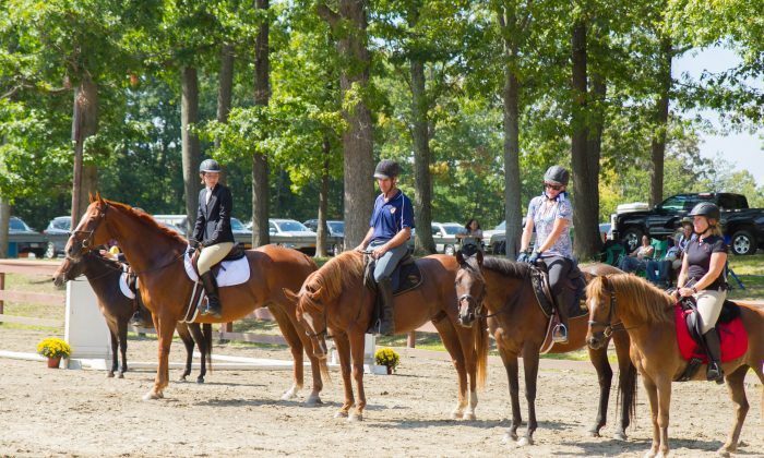 Riders at the Middletown Rotary Charity Horse Show at Fancher Davidge Park in Middletown on Sept. 6, 2015. (Holly Kellum/Epoch Times)