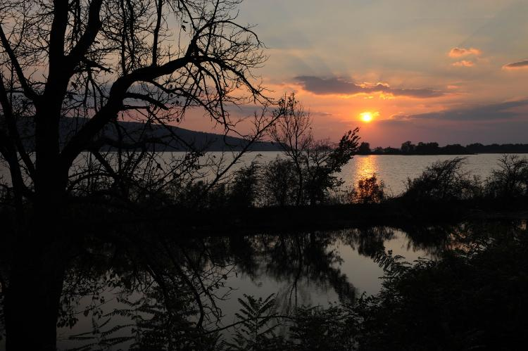Pictured above, the sun sets over Danube river nearby Bazias (480km west from Bucharest) on October 9, 2010. Romanian witches have tossed mandrake into the river to curse government officials over a new tax imposed on them. (Daniel Mihailescu/AFP/Getty Images )