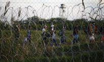 Slovenia Starts Building Migrant Fence at Border to Croatia