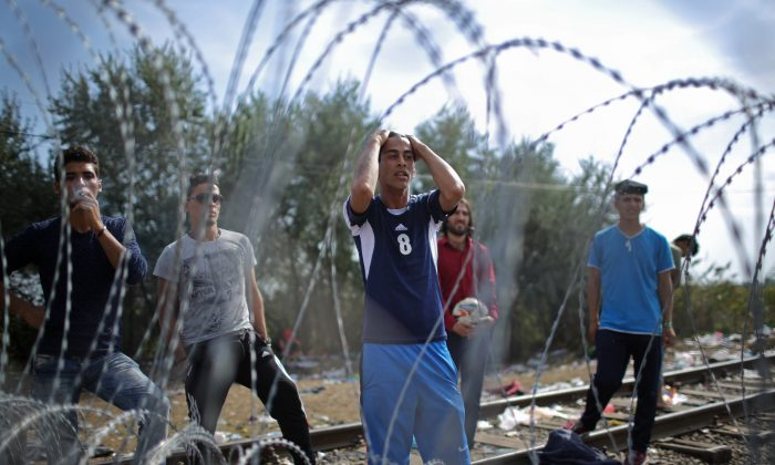 Migrants demonstrate with police officers through the razor wire fence from the Serbian side of the Serbian-Hungarian border at the closed rail track crossing point on September 15, 2015 in Roszke, Hungary. (Christopher Furlong/Getty Images)