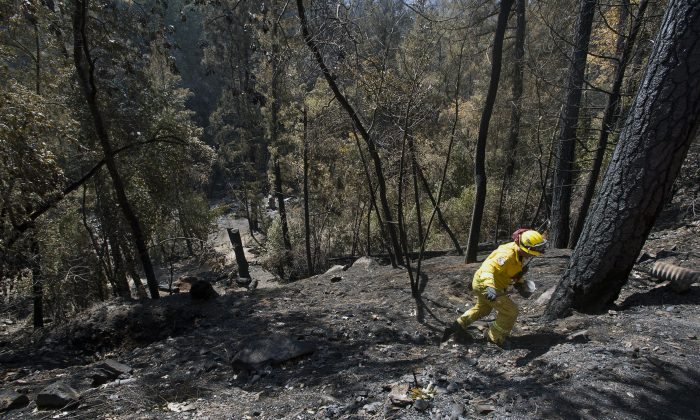 Matthew Wessell of Cal Fire Engine #3172 of Riverside climbs a scorched hillside checking for hot spots on Thursday, Sept. 17, 2015, in Anderson Springs, Calif. (Paul Kitagaki Jr./The Sacramento Bee via AP)