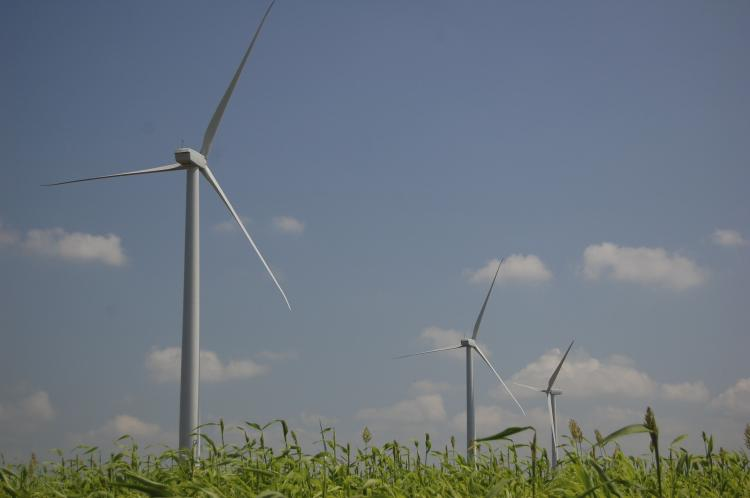 Despite heightened demand for renewable energy, growth of the U.S. wind energy industry has lost some wind behind its sails in 2010. (The Epoch Times)