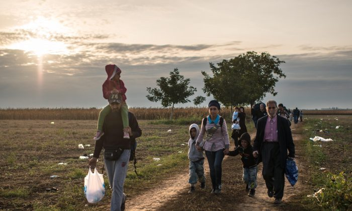 Migrants walk the last few kilomtres from Serbia to Croatia as more migrants continue to arrive by bus on Sept. 21 in Sid, Serbia. (David Ramos/Getty Images)